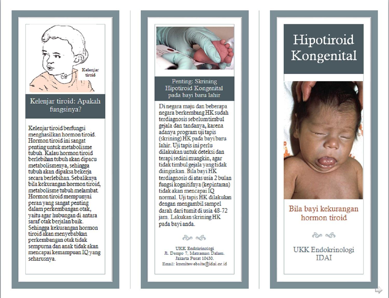 leaflet hk1