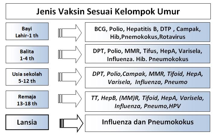tabel imunisasi